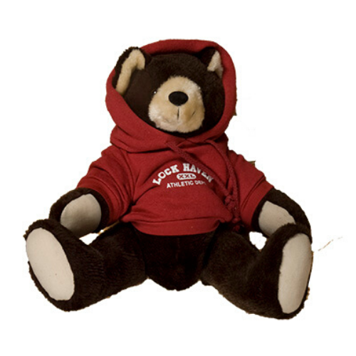 Image For Chelsea Bear with Hoodie