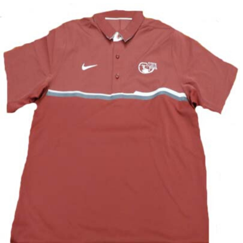 Image For Nike Polo